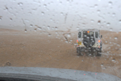 Insider Report storms North Africa