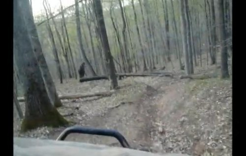 Insider Report: Did this couple really catch Bigfoot on camera?