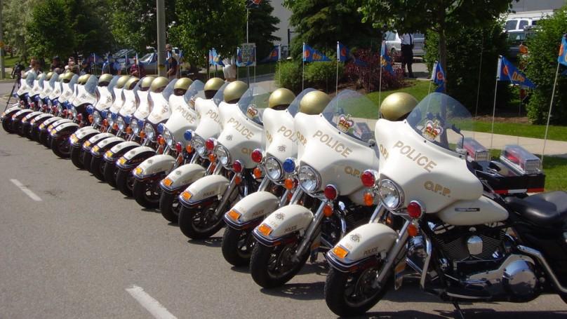 Harley-Davidson hogs the spotlight