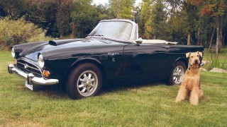 Eye Candy: Rare British roadster boasts a Shelby V8