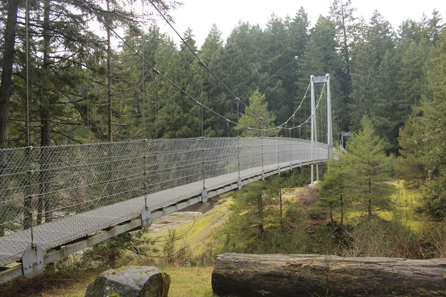 Top Bridge in Rathtrevor Beach Provincial Park