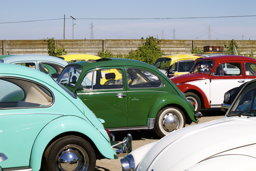 Numerous Volkswagen Beetles in various colours