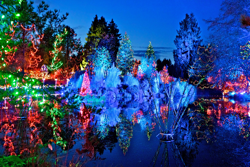 festival of lights at vandusen botanical garden vancouver