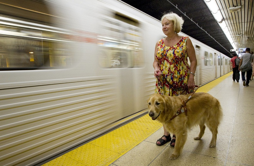 Frequently Asked Questions - Guide Dog Foundation
